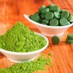 Os benefícios das algas
